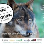 Expo 'Wolven in Limburg'