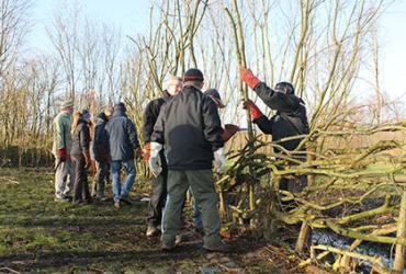 Workshop Heggenvlechten aan de Luysmolen in Bocholt